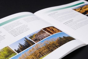fim-brochure